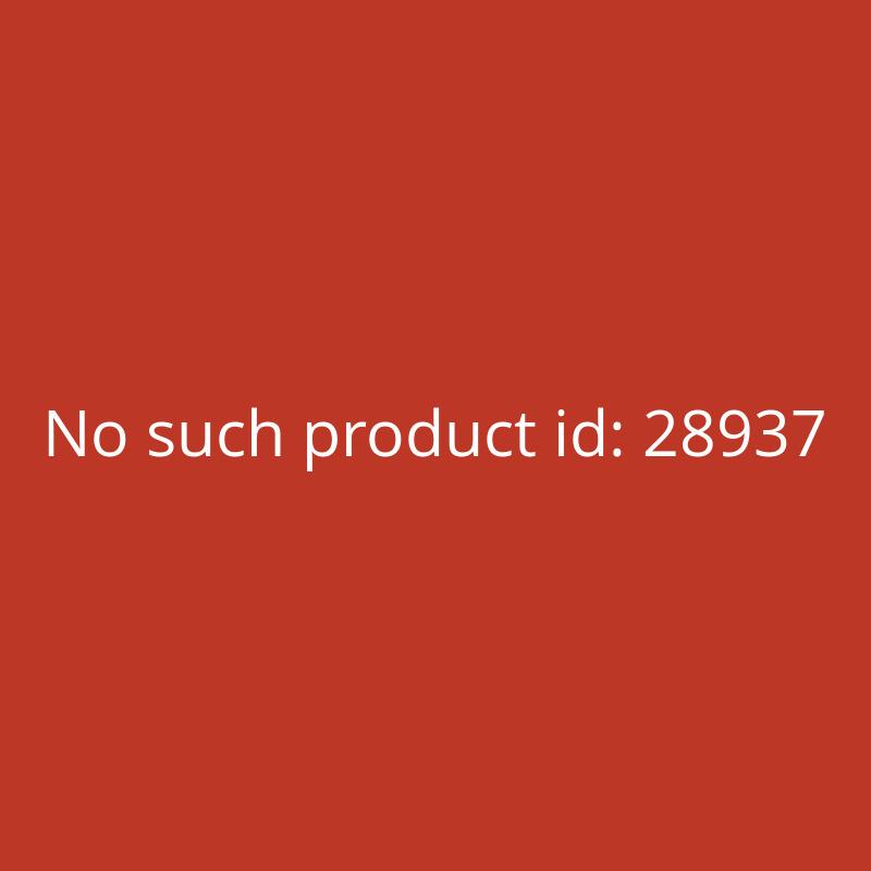 ECTIVE CSI34 300W24V Sinus Wechselrichter mit Ladegerät, NVS und USV Funktion