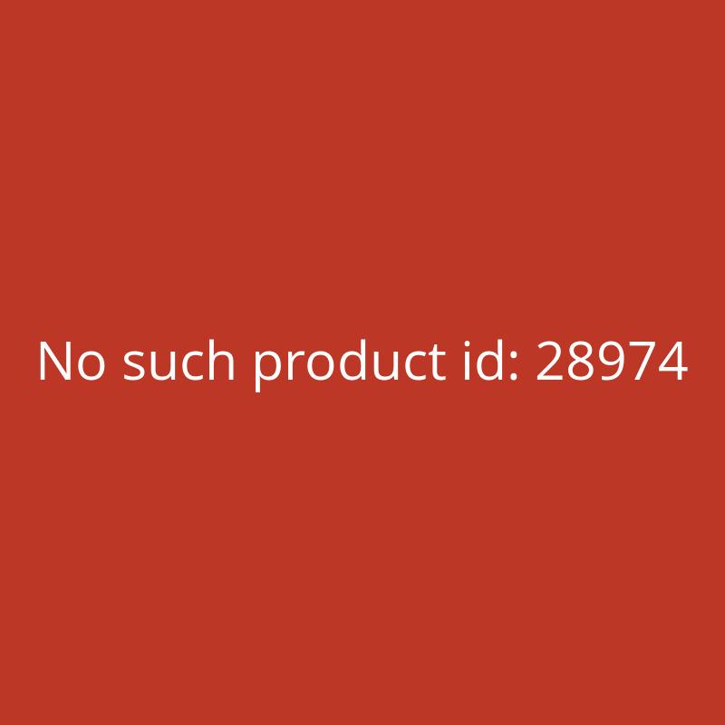 ECTIVE CSI 5 500W24V Sinus Wechselrichter mit Ladegerät, NVS und USV Funktion